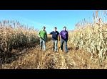 Tres agricultores y su  video 'Farmer Style' son un éxito en Youtube - Noticias de baile del caballo